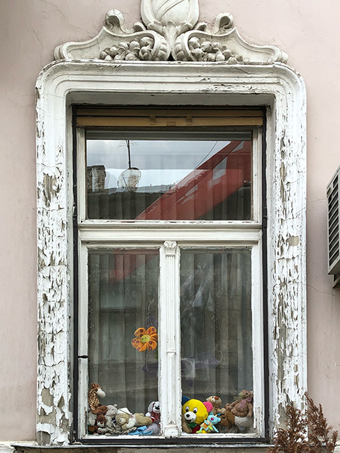 Window in Novi Sad 2019