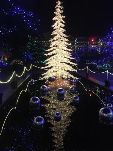 Van Dusen garden lights