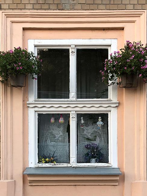 Window in Novi Sad 2019