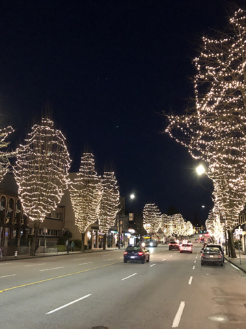 Hastings Street - Christmas lights